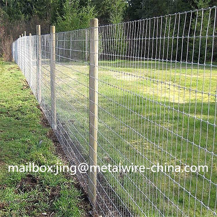 grassland fence